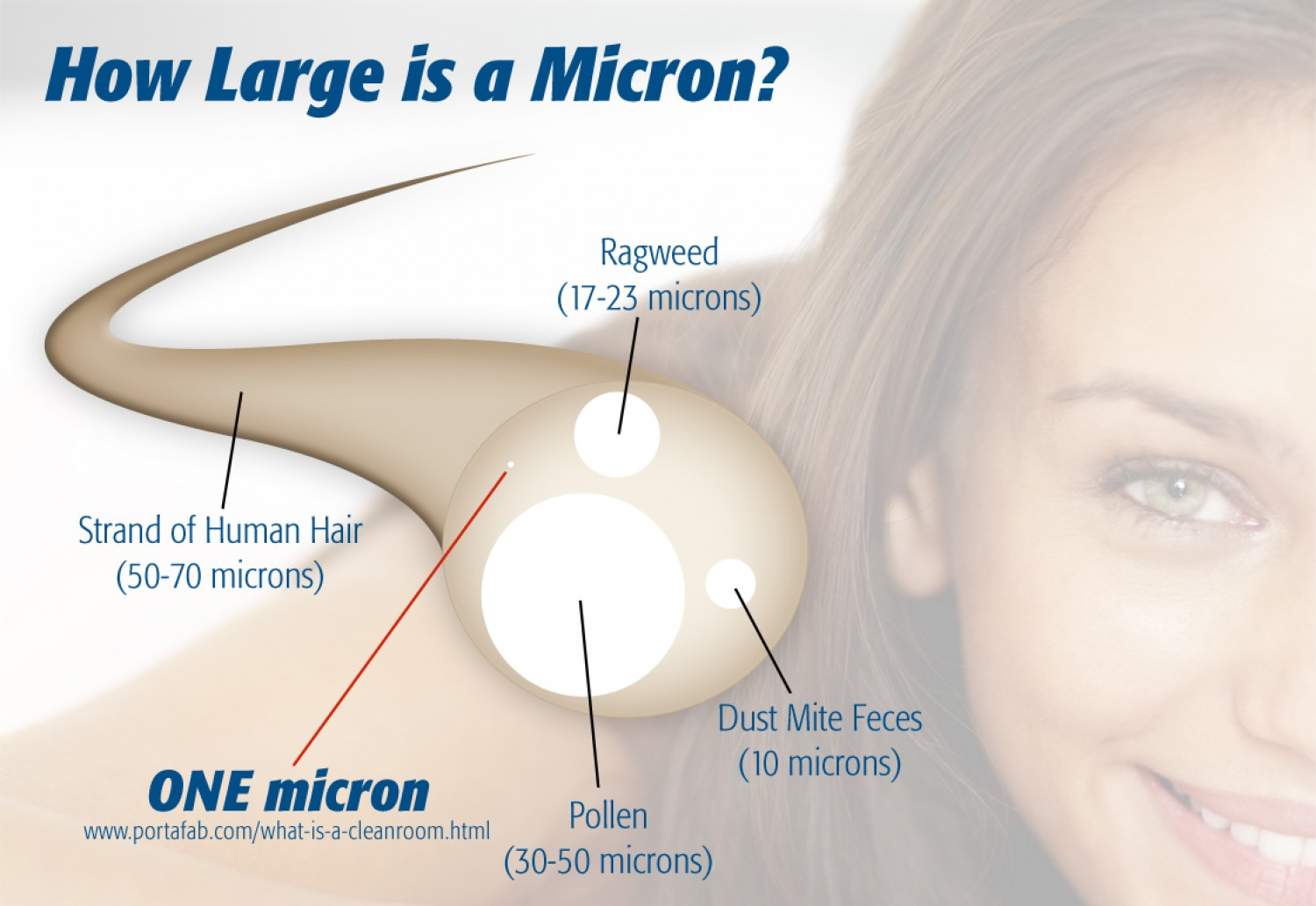 cleanroom particles micron size
