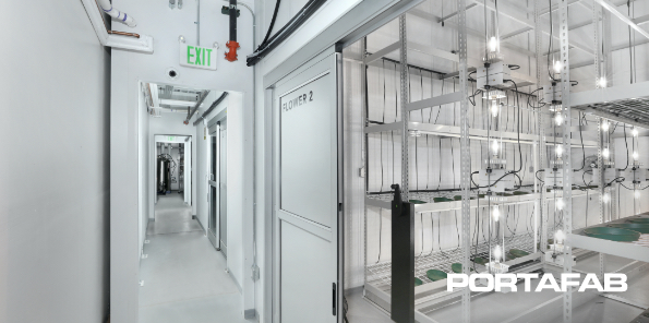 Cannabis Cultivation Room